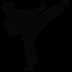 TransStadia karate